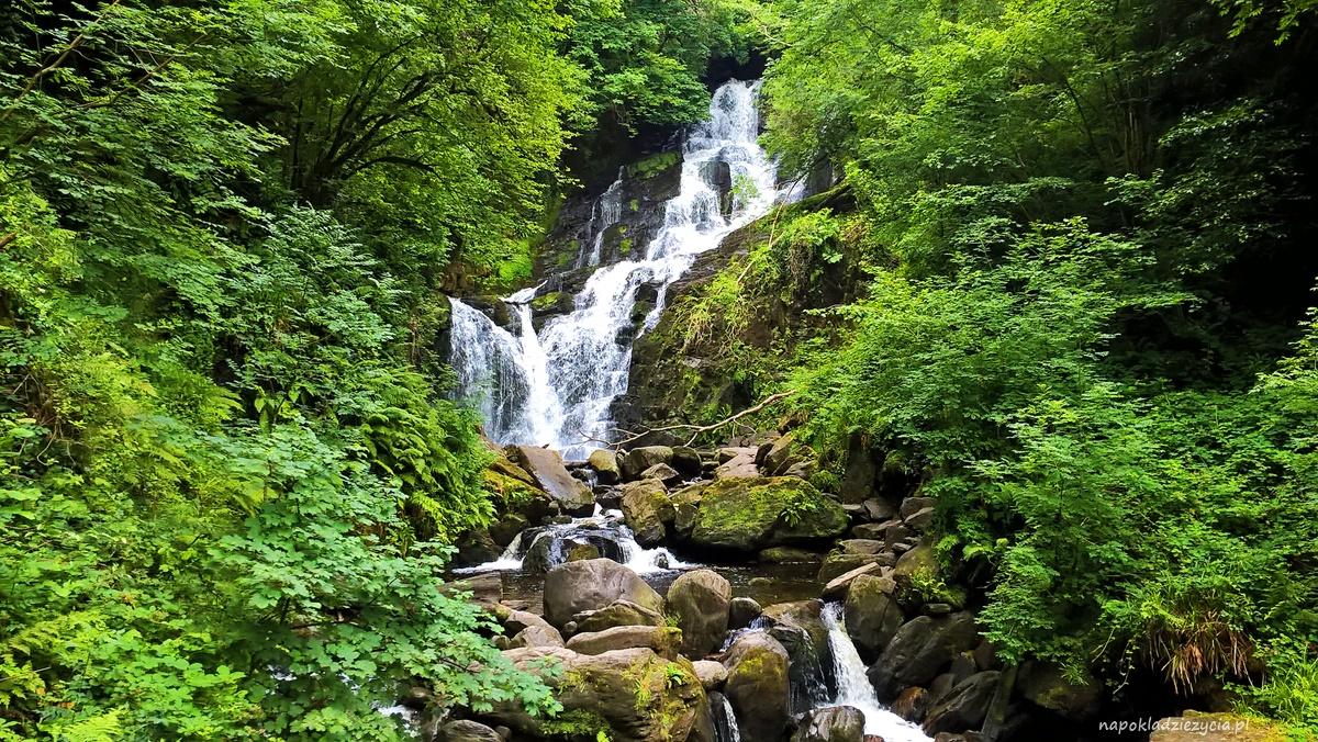 Killarney w Irlandii, co zobaczyć: Killarney National Park