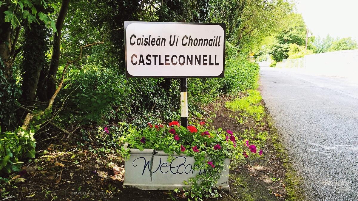 work&travel Irlandia