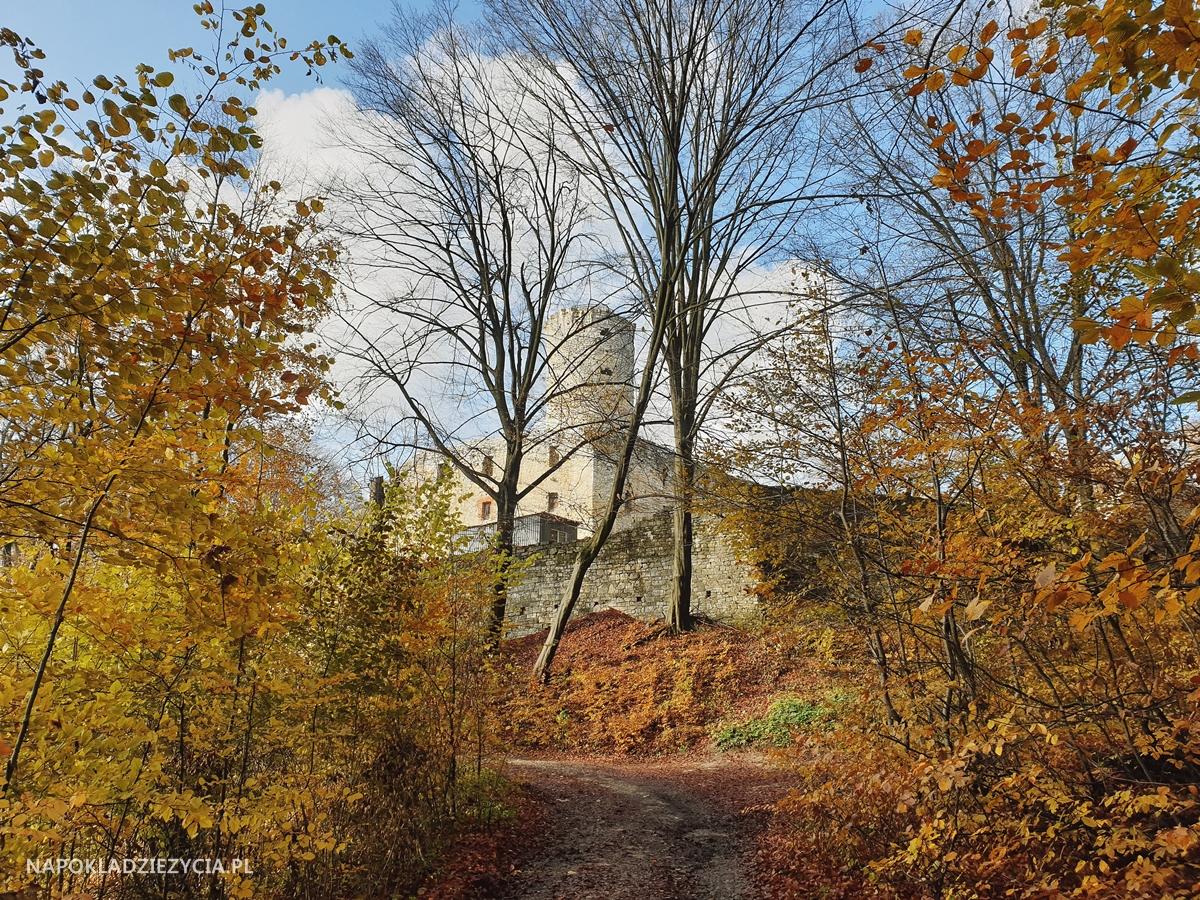Szlak Orlich Gniazd, trasa samochodowa: Zamek Lipowiec w Babicach