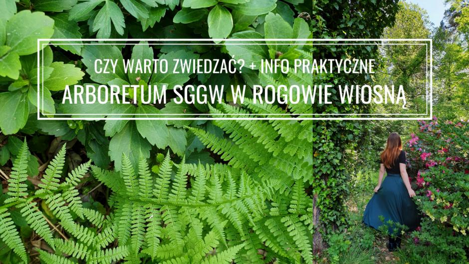 Arboretum SGGW w Rogowie: opinia, godziny otwarcia, cennik i zdjęcia