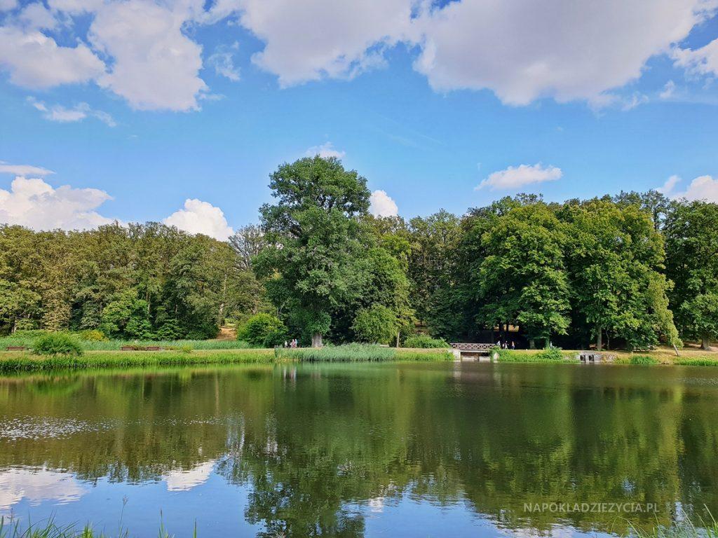 Woda w Ośrodku Kultury Leśnej w Gołuchowie
